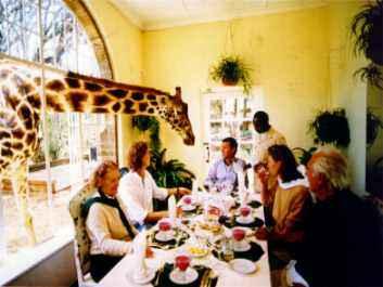 http://cseries.typepad.com/photos/uncategorized/giraffe_manor.jpg